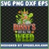Bunnys Got All The Weed Easter Graphic Novelty SVG PNG DXF EPS 1