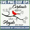 Cardinals Appear When Angles Are Near 1