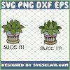 Succulents Cactus Cacti Succ It 1