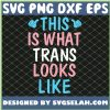 This Is What Trans Looks Like Transgender Lgbt Pride SVG PNG DXF EPS 1